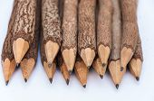 Bunch Of Pencils Stylized Two Branch. Isolated On The White