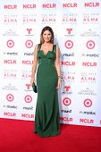 LOS ANGELES - SEP 27:  Daisy Fuentes at the 2013 ALMA Awards - Arrivals at Pasadena Civic Auditorium