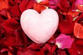 stock photo of rose close up  - Beautiful red rose petals with heart - JPG