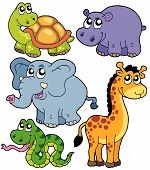 stock photo of zoo animals  - African animals collection  on white background  - JPG