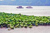 Oil Painting Stylized Photo Of Traditional Chinese Boats Floating On West Lake, Hangzhou, China