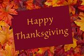 picture of thanksgiving  - A Happy Thanksgiving card A red card with words thank you over red and orange maple leaf background - JPG