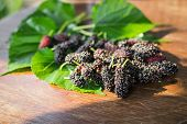 image of mulberry  - heap of mulberry fruit and leaf on wooden table - JPG
