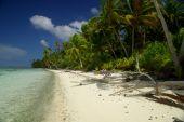 White sand beach in Polynesia