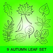 simple leaf set eps10