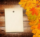 Old Grunge Paper With Autumn Maple Branch Leaves On The Wooden Background