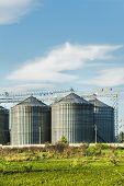 Industrial Silos In The Fields