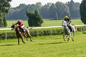WROCLAW, POLAND - SEPTEMBER 6: Race for 3-year-old Arabian horse group II on 6 September 2014 in Wro