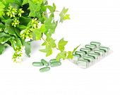 foto of antidepressant  - herbal medicine with green plant - JPG