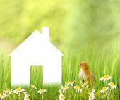 Dream house on nature background