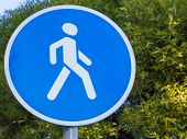Road Sign With A Pedestrian