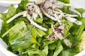 Rucola Salad with onions - Lebanese food