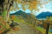 Lookout Point At Schliersee With Bench In Autumnal Landscape