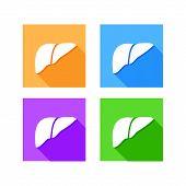 Human liver icon logo, flat long shadow