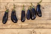 Aubergine Hanging On A Wooden Background