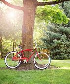 a old style bike leaning against a tree