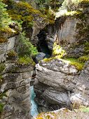 Sunlit Mossy Cliffs in Maligne Canyon