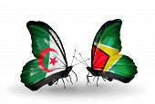 Two Butterflies With Flags On Wings As Symbol Of Relations Algeria And Guyana