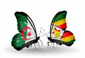 Two Butterflies With Flags On Wings As Symbol Of Relations Algeria And Zimbabwe