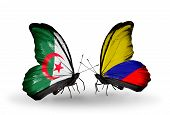 Two Butterflies With Flags On Wings As Symbol Of Relations Algeria And Columbia