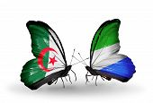 Two Butterflies With Flags On Wings As Symbol Of Relations Algeria And Sierra Leone