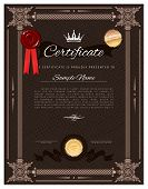 Vintage Certificate Template With Detailed Border And Calligraphic Elements - Portrait Orientation