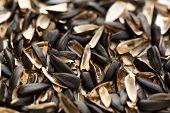 Sunflower Seed Husk