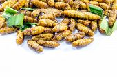 stock photo of silk worm  - Fried silk worms with green pandan leaves - JPG
