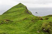 Green landscape on Faroe islands in summer.