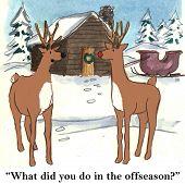 Christmas Offseason