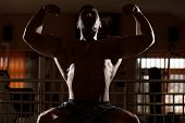 pic of siluet  - Man Showing His Well Trained Body In Gym - JPG
