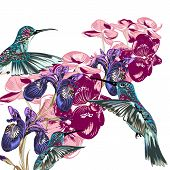 Flower Pattern With Hummingbirds, Orchids And Irises