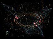 Evolving Network