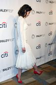 LOS ANGELES - MAR 24:  Lizzy Caplan at the PaleyFEST 2014 -