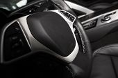 pic of steers  - Car Steering Wheel - JPG