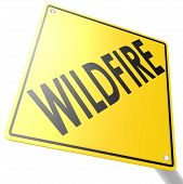 Road Sign With Wildfire