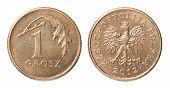 One Polish Coin