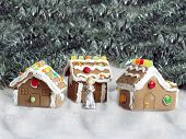 pic of gingerbread house  - hand made gingerbread houses on sugar snow - JPG