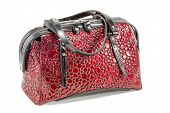 Red Black Female Bag