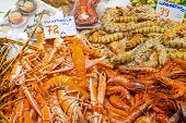 Prawns and shrimps for sale