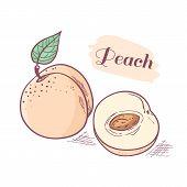 Hand Drawn Peach With Slice