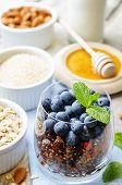 pic of quinoa  - oatmeal nuts quinoa granola with blueberries on a white wood background - JPG