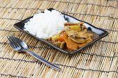pic of pork  - Japanese pork curry with rice carrotonion and potato  - JPG