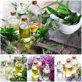 stock photo of essential oil  - Collage from photos of essential aroma oil on wooden background - JPG