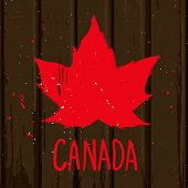 image of canada maple leaf  - Red maple leaf on brown wood wall vector grunge style illustration background - JPG
