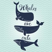 pic of whale-tail  - Whales are cute - JPG