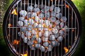 image of blisters  - Garden grill with blistering briquettes - JPG
