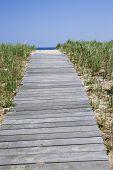 pic of martha  - Wooden walkway leading to beach on Martha - JPG