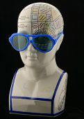Phrenology Head Wearing Sunglasses