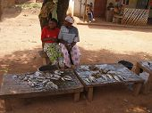 fishmonger women in africa